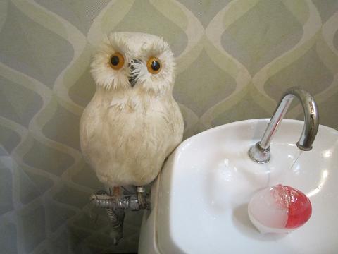 トイレの住人