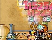 Maple110430_201337.jpg