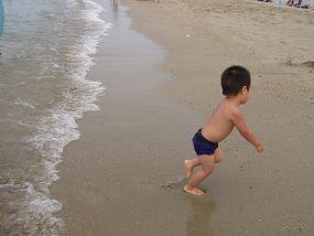 海から逃げる