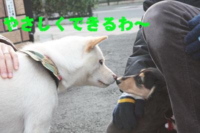 あみちゃん2009-12-4