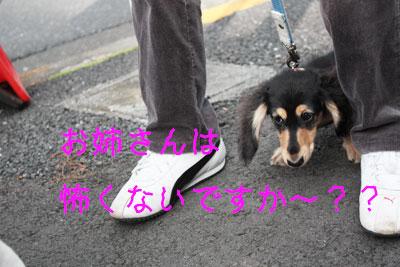 あみちゃん2009-12-3