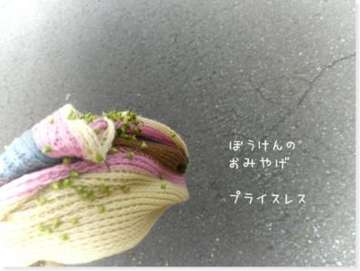9_20091201183949.jpg