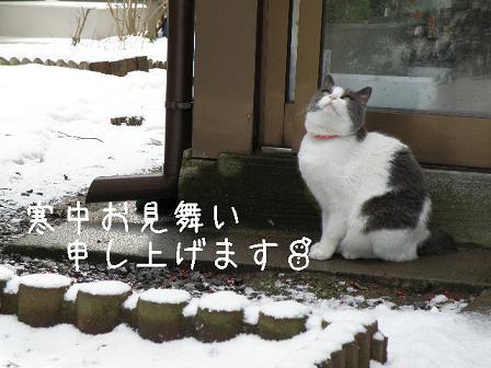 2010_02060015.jpg