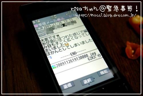 dsc_1649.jpg