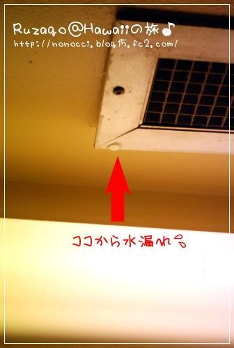 DSC_6546.jpg