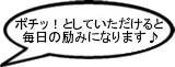 kome0001.jpg