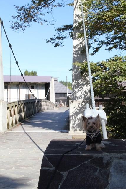 ノンたんと吊り橋