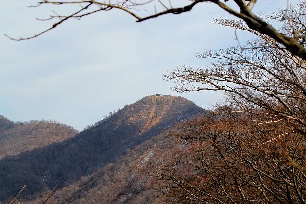 2011_01_23_4917-2.jpg