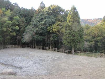 fence3_20101202204337.jpg