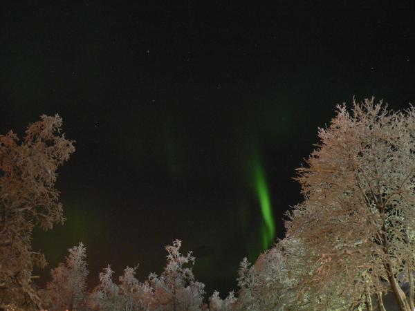 norrsken02