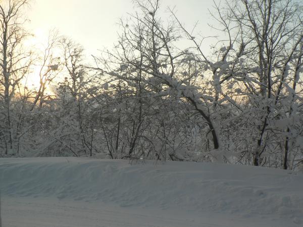120128_kiruna_01