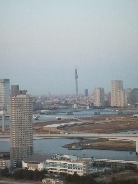 H23.1.28 IFF東京ビックサイト 062