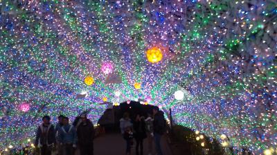 光のトンネル☆