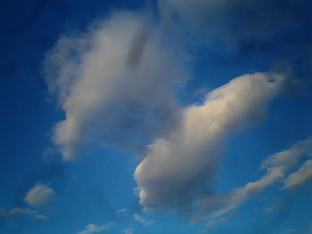 2009.12.31の空