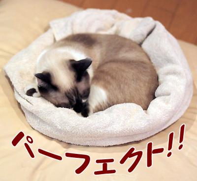 よんきち円3