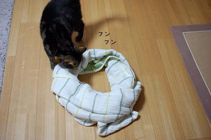 ばきお円1
