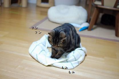 ばきお円2