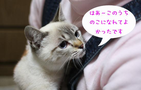 IMG_5346-13.jpg