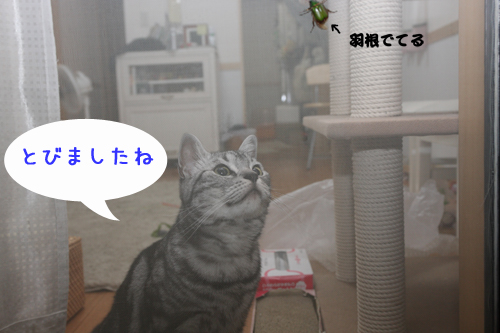 IMG_8544-081.jpg