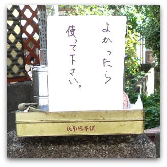P1170683-moji.jpg