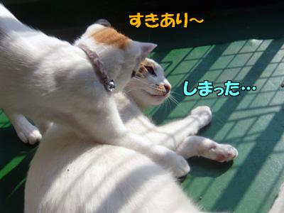 091113-01.jpg