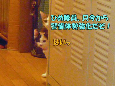 091114-03.jpg