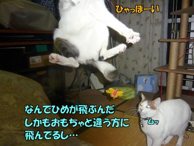 091121-03.jpg