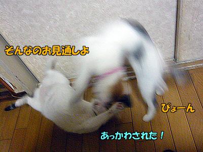 091211-07.jpg