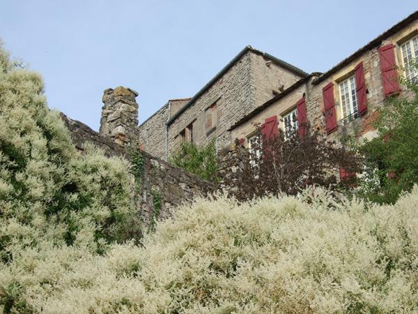 Cordes-sur-Ciel107