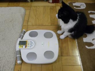 くり子体重1