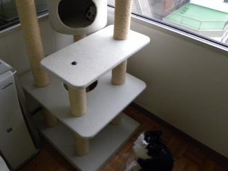 くり子タワー