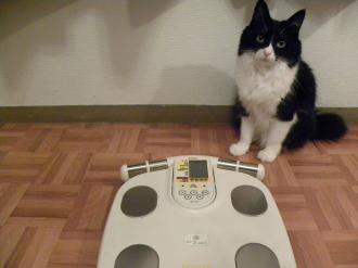体重測定1
