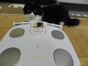 くり子体重測定1