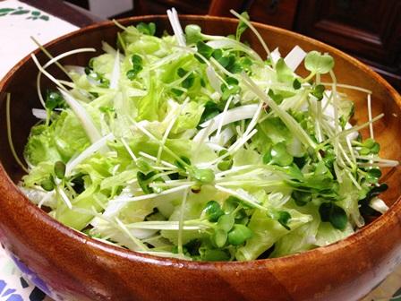 貝割れ白菜レタスのサラダ