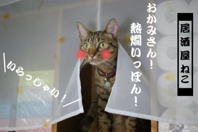 1_20091203131607.jpg