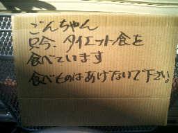 CIMG9368_20100506151414.jpg