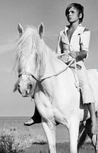 映画「白い馬」
