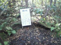浮島の森10