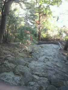 神倉神社6