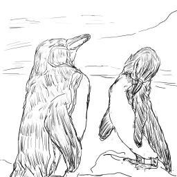 模写_ガラパゴスペンギン