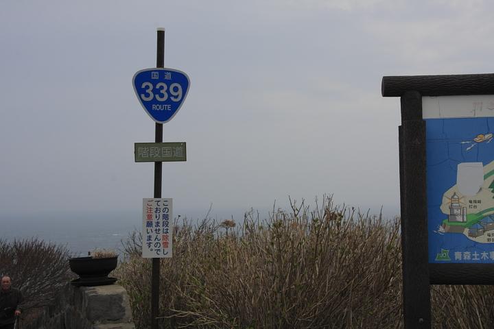 339-9.jpg
