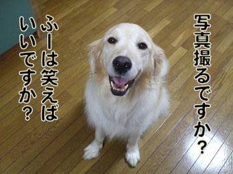 2009_07160041.jpg