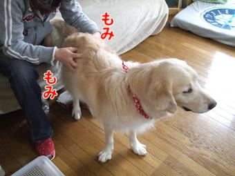 2010_04070036.jpg
