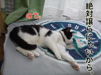 2010_04070061.jpg
