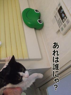 2010_04110030.jpg