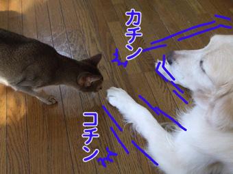 2010_05030009.jpg