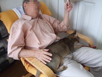 2010_05090002_20100531131422.jpg