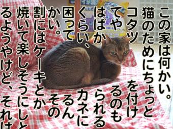 2010_05120002.jpg