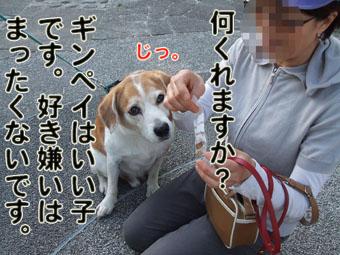 2010_05160041.jpg