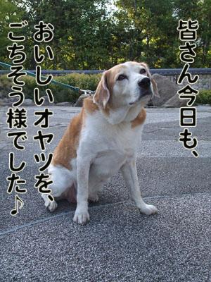 2010_05160043.jpg